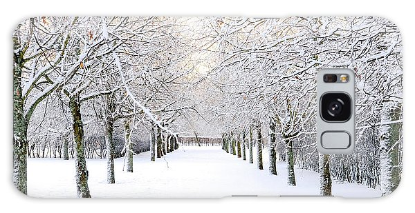 Pathway In Snow Galaxy Case