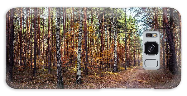 Pathway In The Autumn Forest Galaxy Case