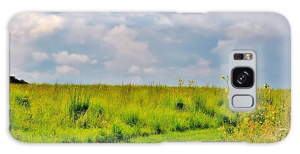 Pathway Through Wildflowers Galaxy Case