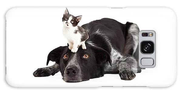 Patient Border Collie With Little Kitten On Head Galaxy Case