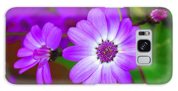 Pattern 275 _ Wild Flower Galaxy Case