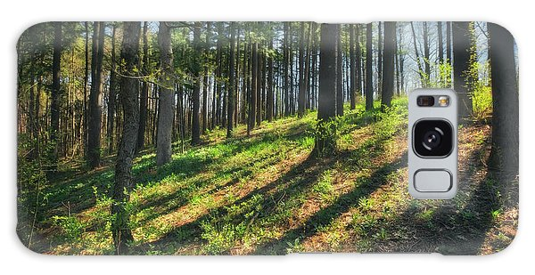 Peaceful Forest 4 - Spring At Retzer Nature Center Galaxy Case by Jennifer Rondinelli Reilly - Fine Art Photography