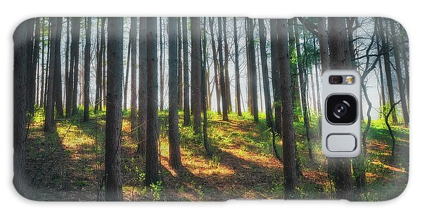 Peaceful Forest - Spring At Retzer Nature Center Galaxy Case by Jennifer Rondinelli Reilly - Fine Art Photography