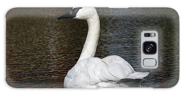 Peaceful Swan Galaxy Case