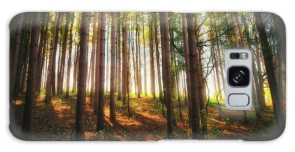Peaceful Wisconsin Forest 2 - Spring At Retzer Nature Center Galaxy Case by Jennifer Rondinelli Reilly - Fine Art Photography