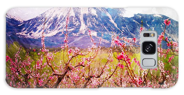 Peach Blossoms And Mount Lamborn II Galaxy Case