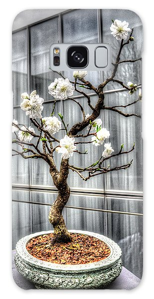 Peach Bonsai Tree Galaxy Case by Wade Brooks