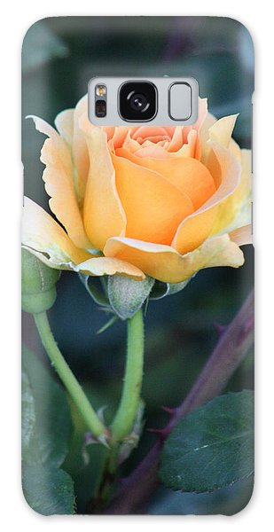 Peach Rose 3 Galaxy Case