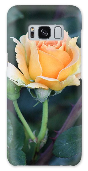 Peach Rose 3 Galaxy Case