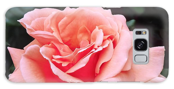 Peach Rose Galaxy Case by Rona Black