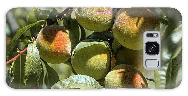 Peaches Galaxy Case