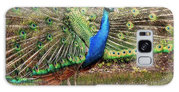 Peacock In Beacon Hill Park Galaxy Case