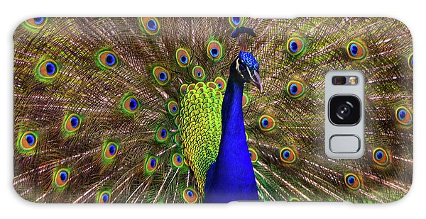 Peacock Showing Breeding Plumage In Jupiter, Florida Galaxy Case by Justin Kelefas