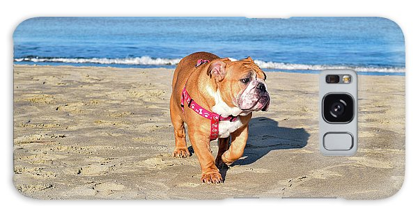 Peanut On The Beach Galaxy Case