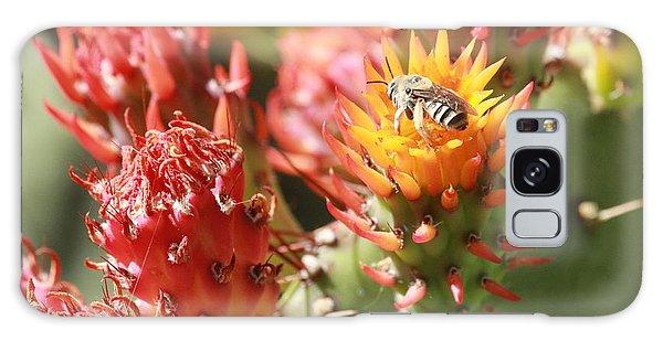 Pear Bee Galaxy Case