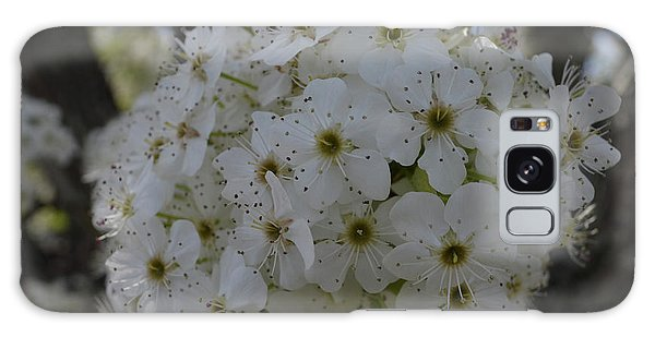 Pear Blossoms Galaxy Case