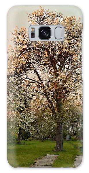 Pear Spring Sunrise Galaxy Case by Henryk Gorecki