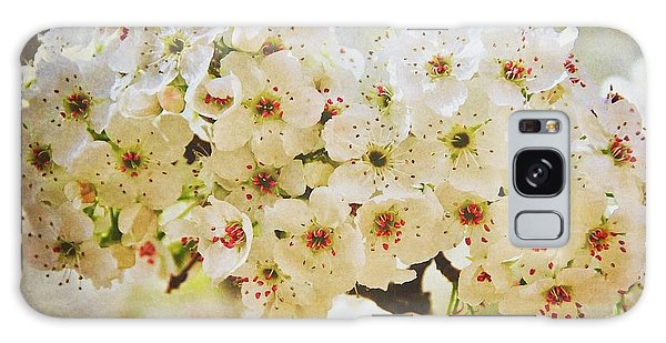 Pear Tree Blossoms   Galaxy Case