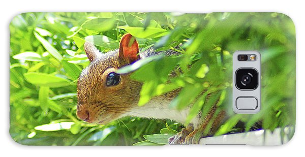 Peek-a-boo Gray Squirrel Galaxy Case