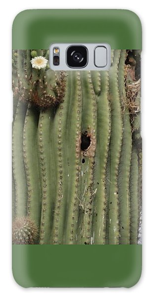 Peek-a-boo Cactus Wren Galaxy Case