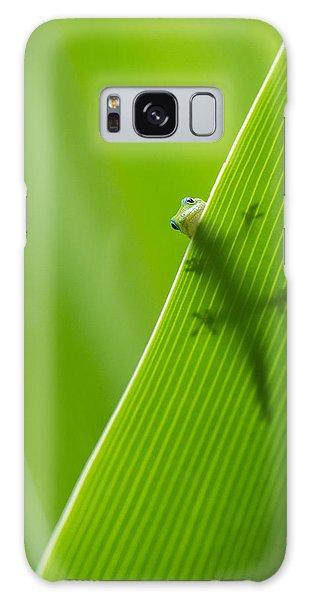 Peek A Boo Gecko Galaxy Case