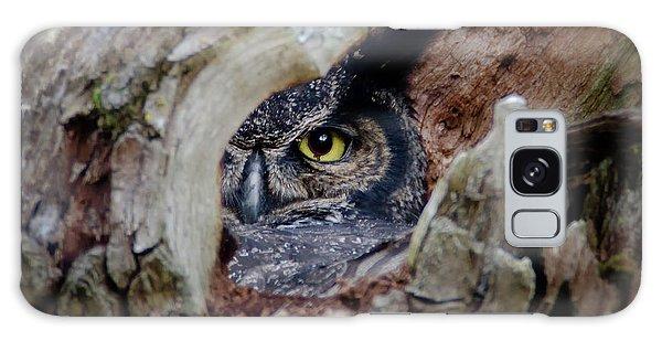 Peek A Boo Owl Galaxy Case