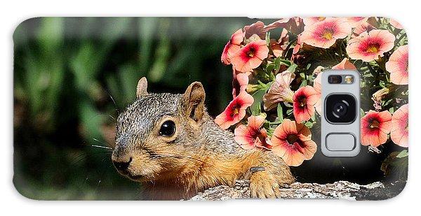 Peek-a-boo Squirrel Galaxy Case