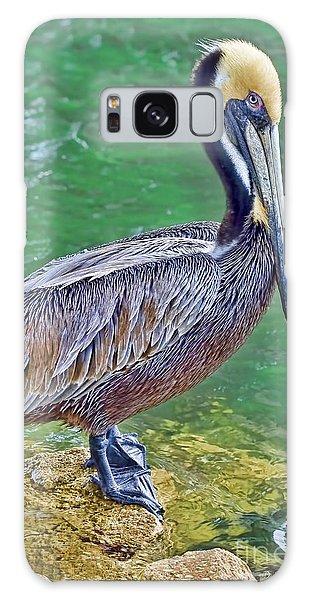 Pelican By The Pier Galaxy Case