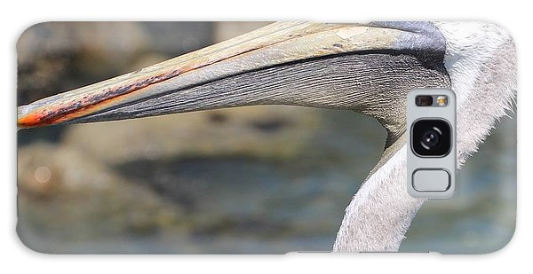 Pelican Face  That Only A Mother Could Love Galaxy Case