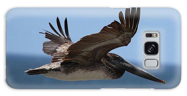 Pelican Flying Wings Up  Galaxy Case