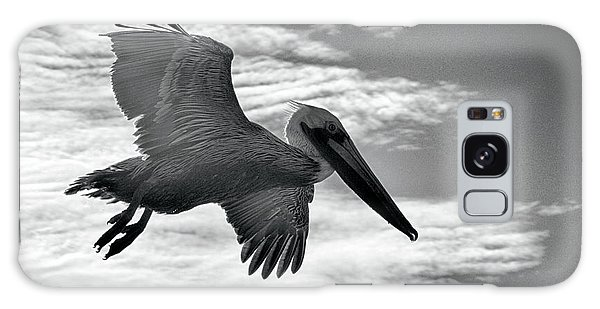 Pelican In Flight Galaxy Case