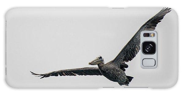 Pelican In Flight Galaxy Case by Bill Mock