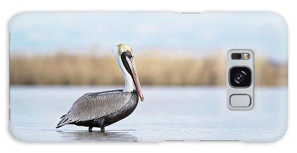 Pelican In Paradise Galaxy Case