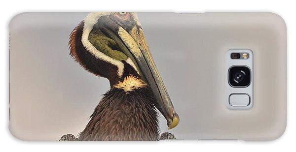 Pelican  Galaxy Case by Nancy Landry