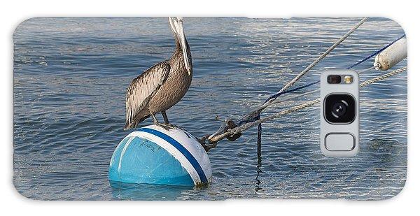 Pelican On A Buoy Galaxy Case
