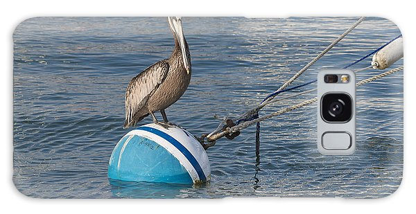 Pelican On A Buoy Galaxy Case by Loriannah Hespe