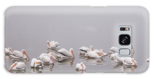 Pelicans On The Lake Galaxy Case