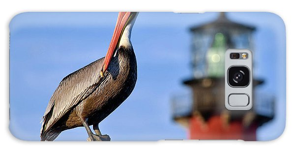 Pelican Perched Under Jupiter Lighthouse, Florida Galaxy Case
