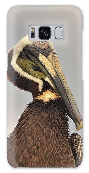Pelican Portrait Galaxy Case by Nancy Landry