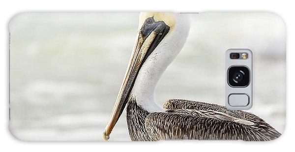 Pelican Pose Galaxy Case
