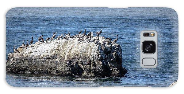 Pelican Rock Galaxy Case