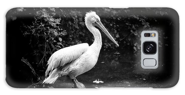 Galaxy Case featuring the photograph Pelican by Traven Milovich