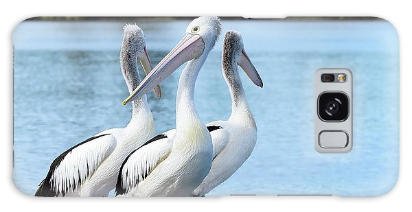 Pelicans 6663. Galaxy Case by Kevin Chippindall