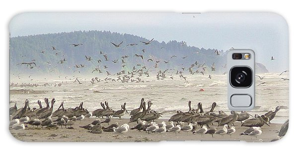 Pelicans And Gulls Galaxy Case by Pamela Patch