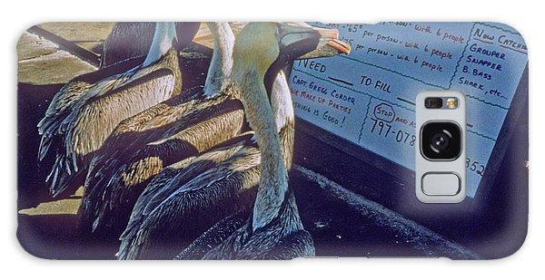 Pelicans And The Menu Galaxy Case