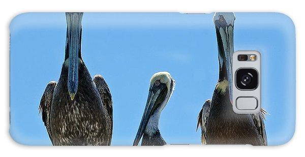 Pelicans At The Kure Beach Fishing Pier 2006 Galaxy Case