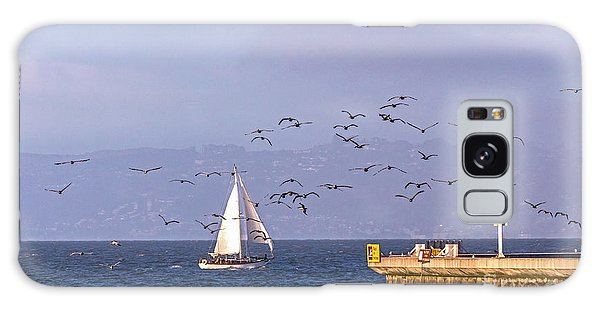 Galaxy Case featuring the photograph Pelicans Pelicans by Kate Brown