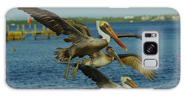 Pelicans Three Amigos Galaxy Case