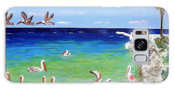 Pelicans Galaxy Case by Vicky Tarcau