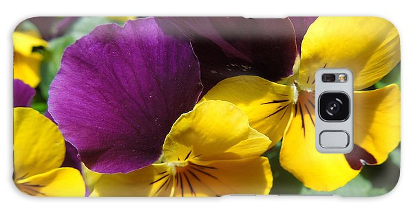 Pella Pansies Galaxy Case